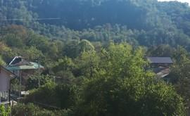 Фото 8: Участок 5.2 сот., Измайловка - Рост Недвижимость