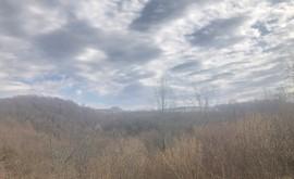 Фото 9: Участок 5.27 сот., Измайловка - Рост Недвижимость